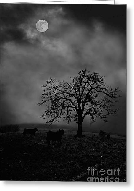 Moonlite Tree On The Farm Greeting Card by Dan Friend