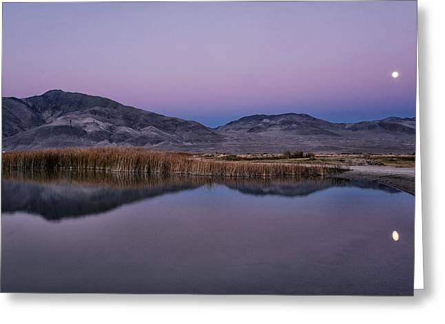 Moonrise Greeting Cards - Moonrise at Klondike Lake Greeting Card by Cat Connor