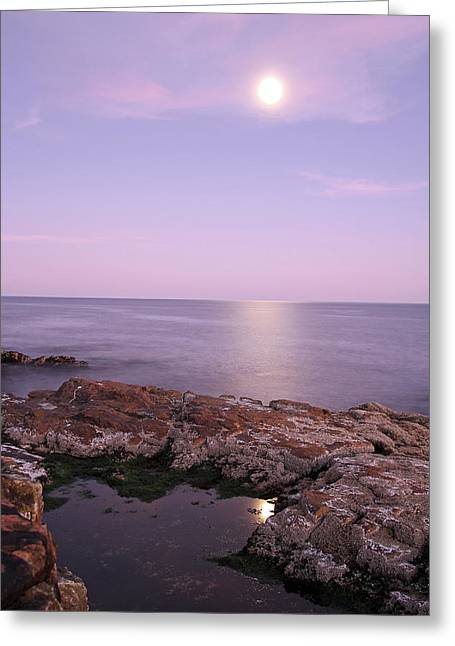 Moonrise Greeting Cards - Moonrise in Acadia National Park Greeting Card by Juergen Roth