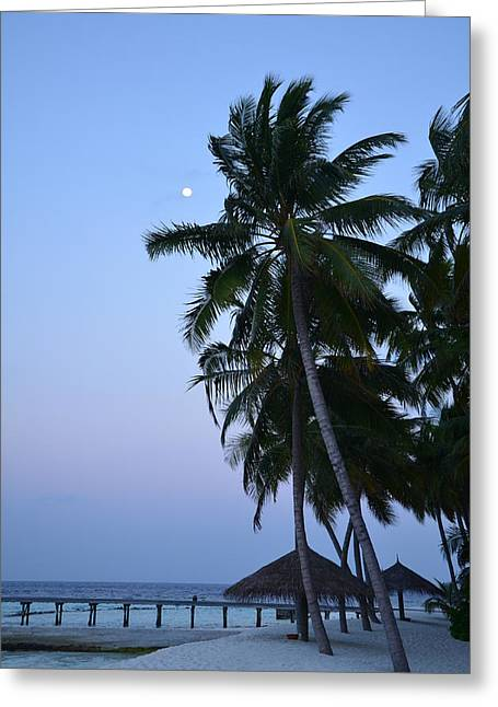 Beach At Night Greeting Cards - Moonrise in Maldives Greeting Card by Corinne Rhode