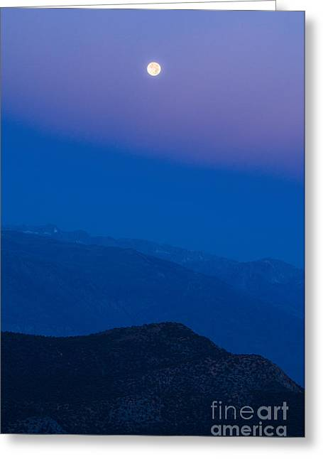Moonrise Greeting Cards - Moonrise Greeting Card by Jamie Pham