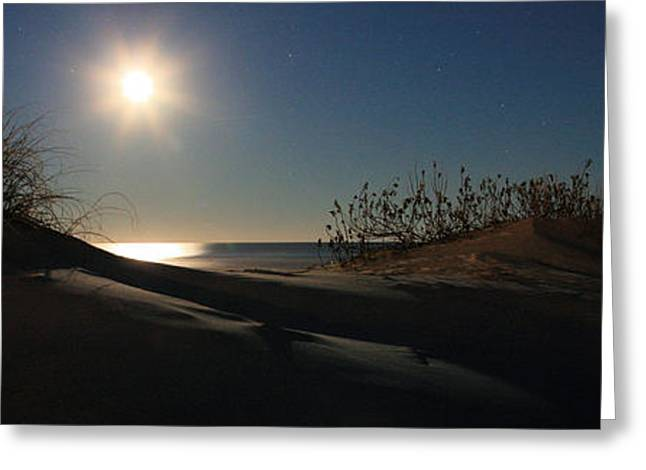 Wrightsville Beach Greeting Cards - Moonrise Over the Dunes Greeting Card by JC Findley