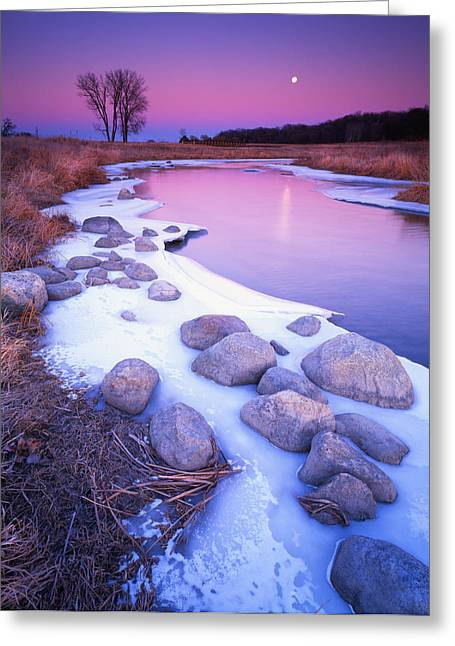 Hack-ma-tack National Wildlife Refuge Greeting Cards - Moonrise Greeting Card by Ray Mathis