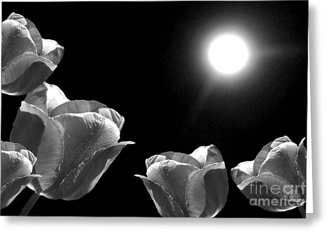 Ohio ist Digital Greeting Cards - Moonshined Tulips Black White Greeting Card by Kathie McCurdy