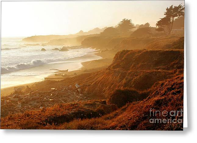Recently Sold -  - Cambria Greeting Cards - Moonstone Beach Cambria 2 Greeting Card by Michael Rock