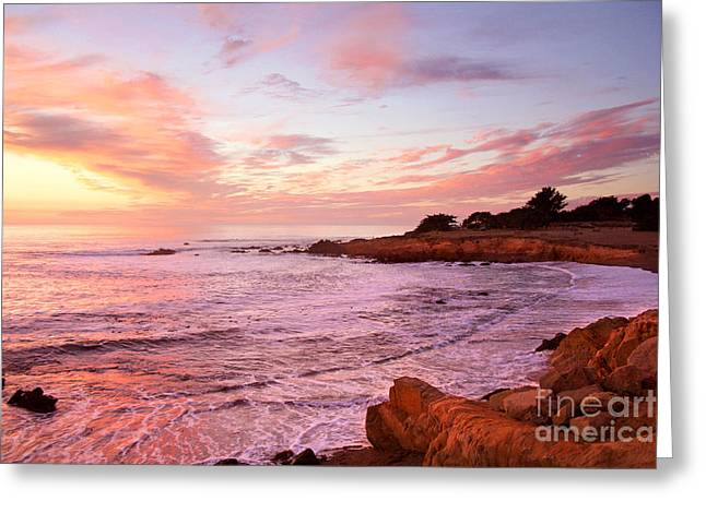 Recently Sold -  - Cambria Greeting Cards - Moonstone Beach Cambria Greeting Card by Michael Rock