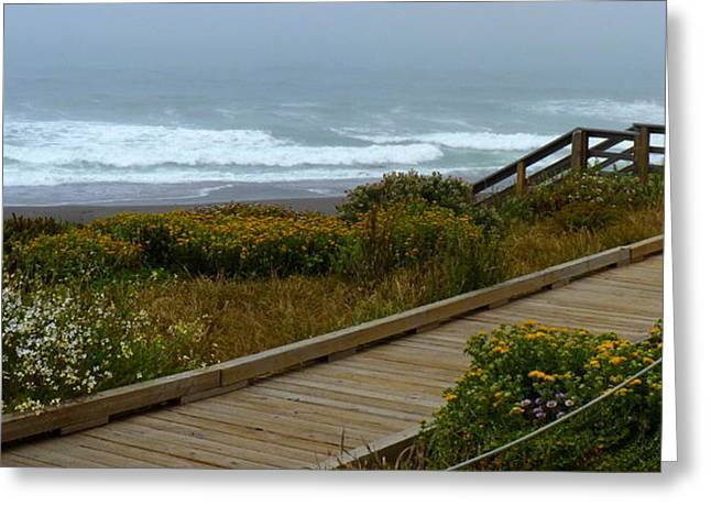 Uncrowded Greeting Cards - Moonstone Beach Panorama Greeting Card by Carla Parris