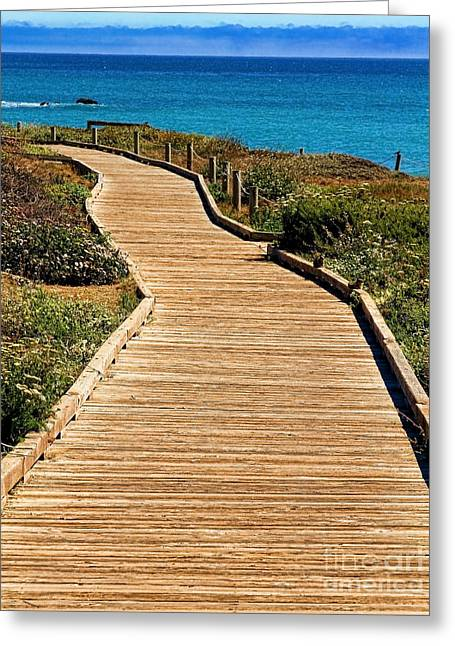 Cambria Greeting Cards - Moonstone Beach Park by Diana Sainz Greeting Card by Diana Sainz
