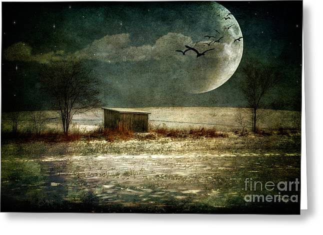 Sheds Greeting Cards - Moonstruck Greeting Card by Lois Bryan