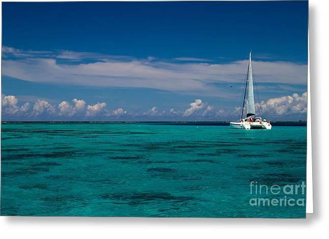 Moorea Lagoon No 16 Greeting Card by David Smith