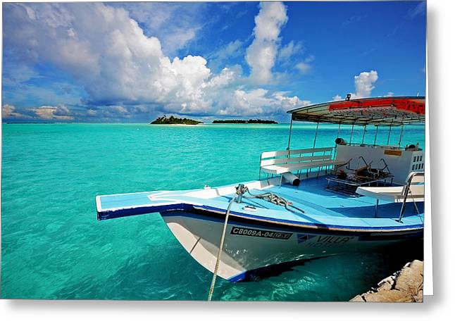 Tropical Oceans Greeting Cards - Moored Dhoni at Sun Island. Maldives Greeting Card by Jenny Rainbow