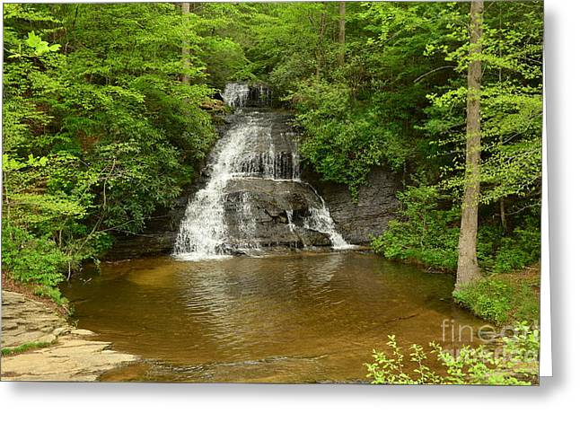 Reflection In Water Greeting Cards - Moores Creek Falls Greeting Card by Bob Sample