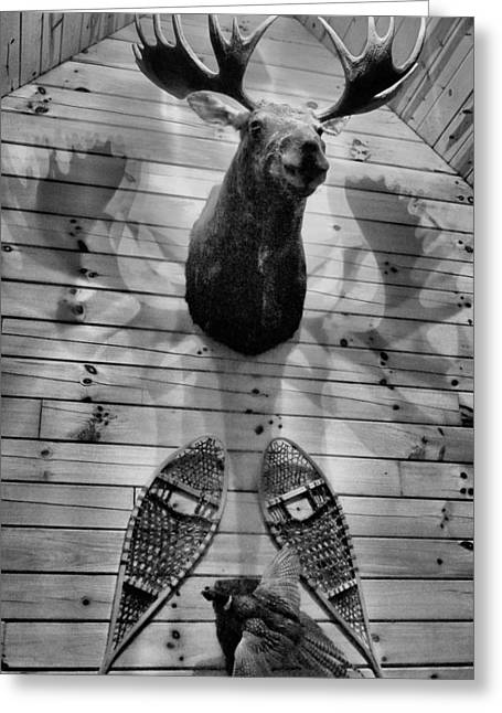 Hunting Cabin Photographs Greeting Cards - Moose Cabin Greeting Card by Dan Sproul