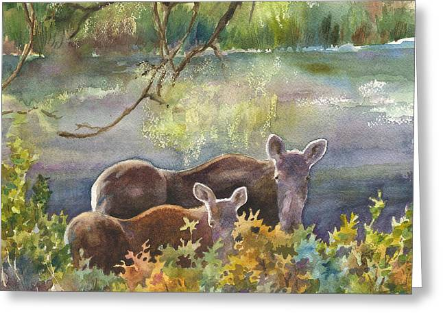 Caribou Greeting Cards - Moose in the Morning Greeting Card by Anne Gifford