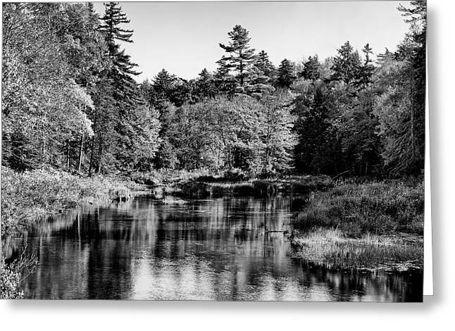 Old And New Greeting Cards - Moose River Calm - Old Forge New York Greeting Card by David Patterson