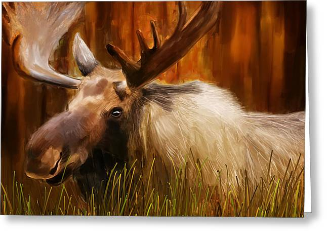 Brown Prints Greeting Cards - Moose Solitude Greeting Card by Lourry Legarde