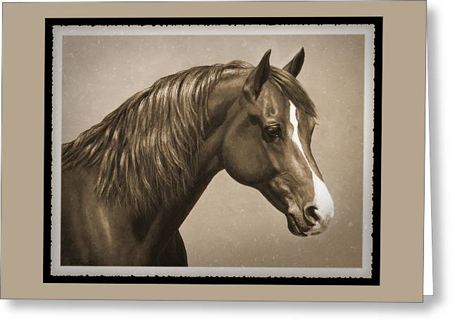 Sorrel Greeting Cards - Morgan Horse Old Photo FX Greeting Card by Crista Forest