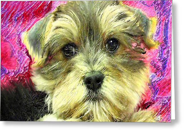 Maltese Digital Greeting Cards - Morkie Puppy Greeting Card by Jane Schnetlage