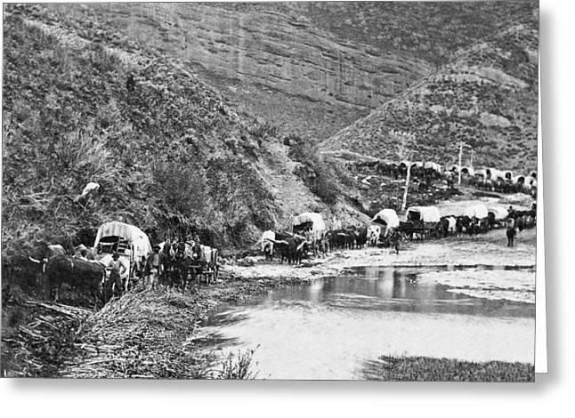 Conestoga Greeting Cards - Mormon Emigrant Conestoga Caravan 1879 - To Utah Greeting Card by Daniel Hagerman