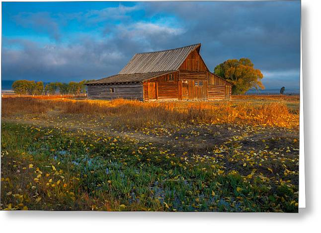 Mormon Row Autumn Greeting Card by Joseph Rossbach