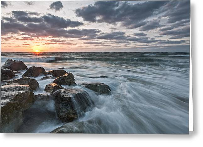 Pink Prints Greeting Cards - Morning All the Time Greeting Card by Jon Glaser