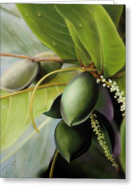 Morning Almonds Pastel Greeting Card by Ben Kotyuk