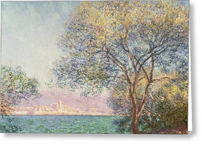 Antibes Greeting Cards - Morning at Antibes Greeting Card by Claude Monet