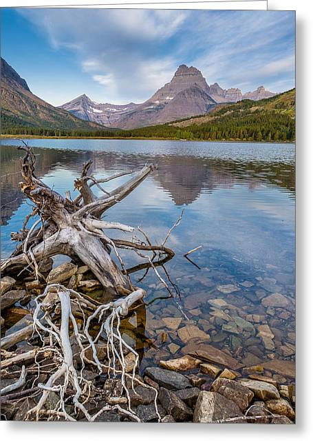 Reflection In Water Greeting Cards - Morning at Swiftcurrent Shoreline Greeting Card by Greg Nyquist
