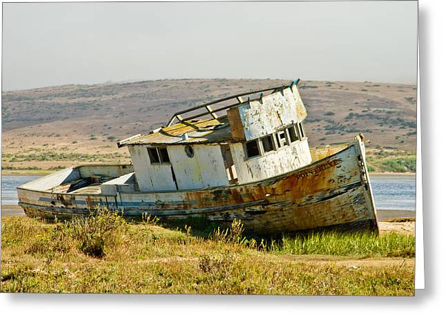 Morning At The Pt Reyes Greeting Card by Bill Gallagher