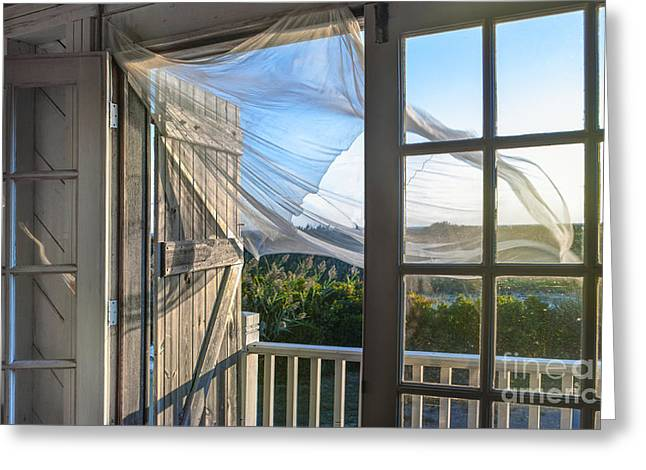 Window Panes Greeting Cards - Morning Breeze at the Beach House Greeting Card by Diane Diederich