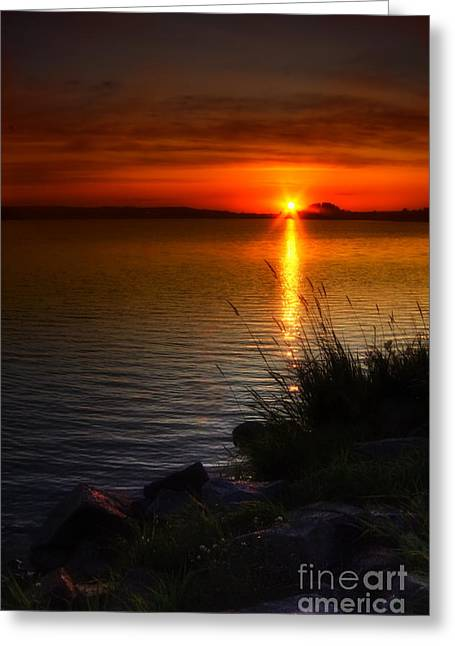 Morning By The Shore Greeting Card by Veikko Suikkanen