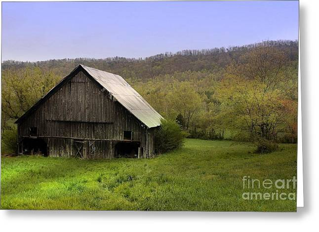 Tennessee Barn Greeting Cards - Morning Call Greeting Card by Rick Lipscomb