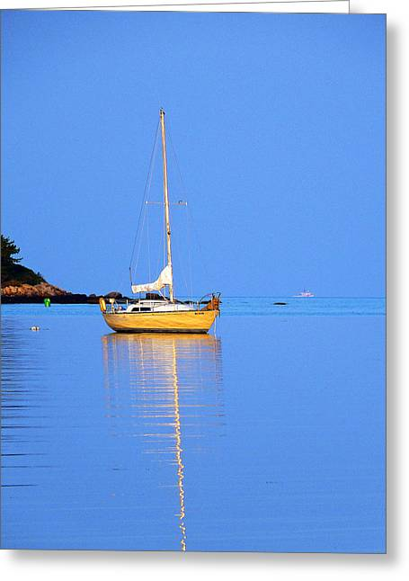 Sailboats In Harbor Greeting Cards - Morning Calm Greeting Card by Carl Sheffer
