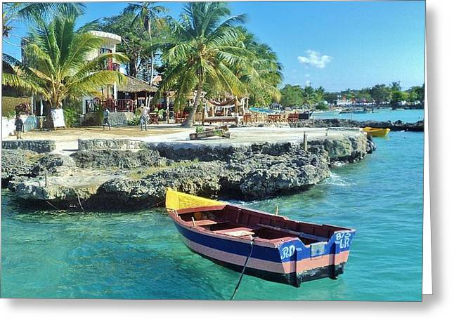 Bayahibe Greeting Cards - Morning Caribbean Greeting Card by Iryna Burkova