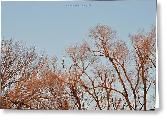 Morning Coloured In Fall Greeting Card by Sonali Gangane