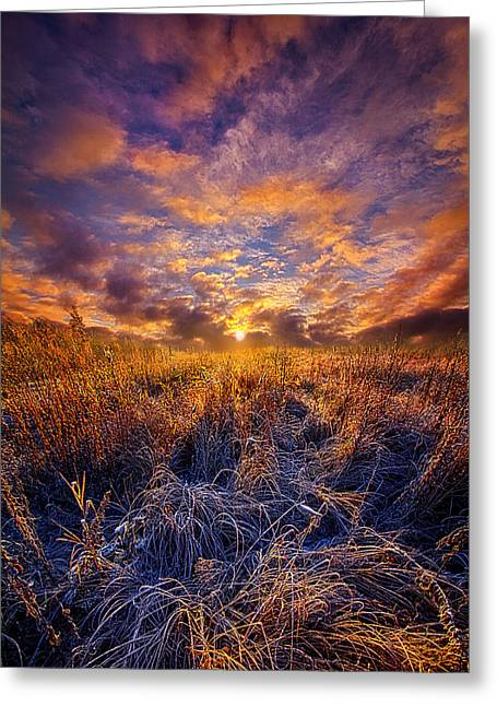 Wisconsin Landscape Greeting Cards - Morning Dance Greeting Card by Phil Koch