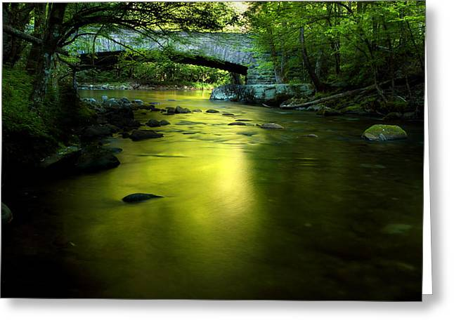 Gsmnp Greeting Cards - Morning Dreams Greeting Card by Michael Eingle