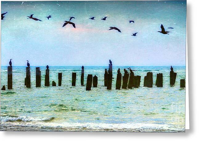 Fine Photographer Digital Greeting Cards - Morning Flight - Birds on Outer Banks Greeting Card by Dan Carmichael