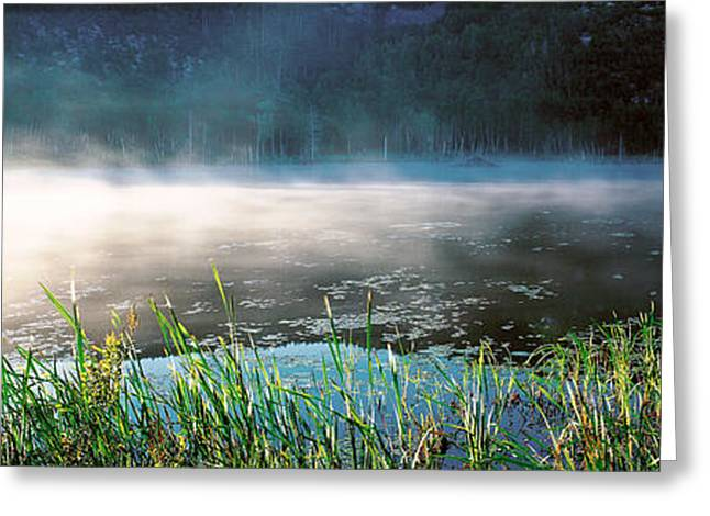 Morning Fog Acadia National Park Me Usa Greeting Card by Panoramic Images