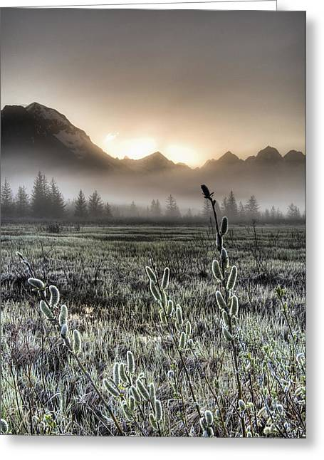Hdr Landscape Greeting Cards - Morning Fog Hangs On The Ground Greeting Card by Carl Johnson