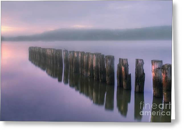 Artist Photographs Greeting Cards - Morning Fog Greeting Card by Veikko Suikkanen