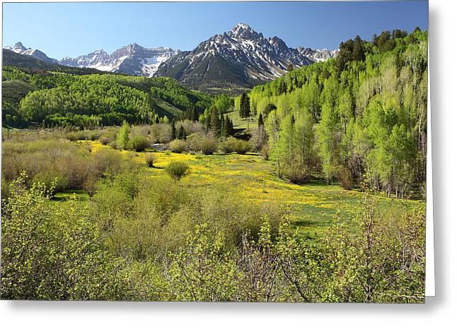 Oak Creek Greeting Cards - Spring Greens Greeting Card by Eric Glaser