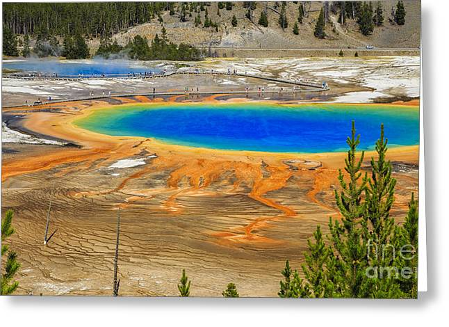 Montana Mountains Greeting Cards - Morning Glory Geyser Yellowstone National Park Greeting Card by Edward Fielding