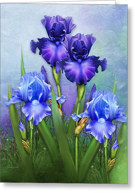 Fine Art Greeting Cards - Morning Glory Greeting Card by Georgiana Romanovna