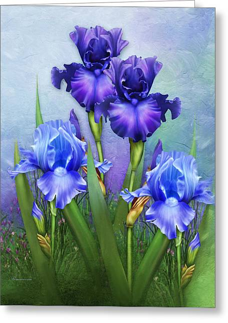 Acylic Greeting Cards - Morning Glory Greeting Card by Georgiana Romanovna