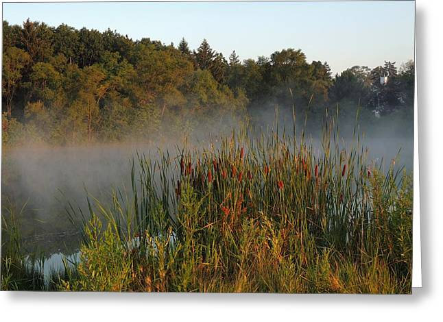 Morning Glow Greeting Card by Teresa Schomig