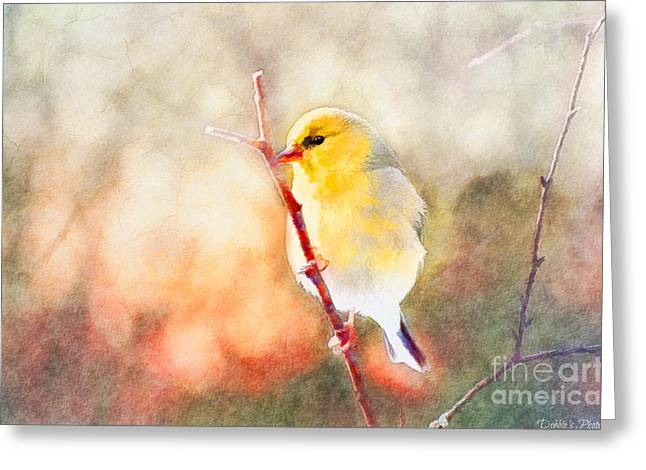Goldfinch Digital Art Greeting Cards - Morning Goldfinch - Digital Paint II Greeting Card by Debbie Portwood