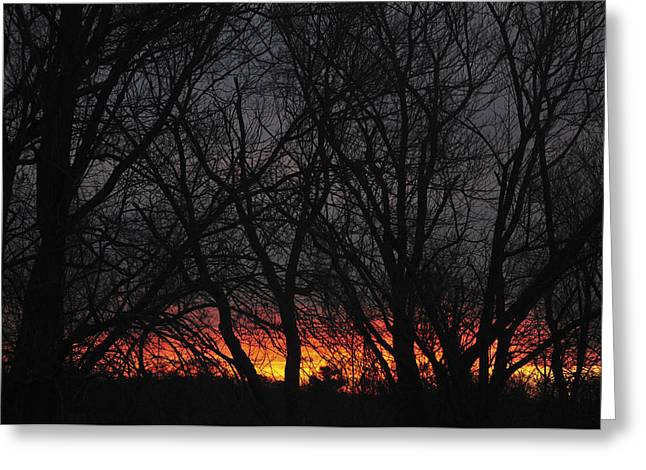 Kitchen Photographs Greeting Cards - Morning Has Broken Greeting Card by Terry DeLuco
