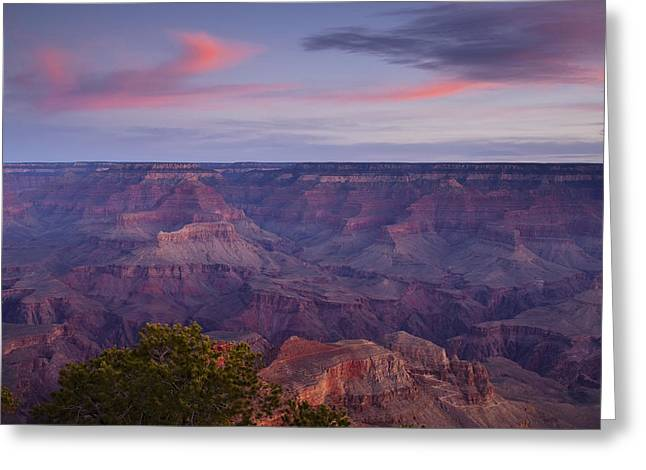 Pink Pastels Greeting Cards - Morning Hike into the Grand Canyon Greeting Card by Andrew Soundarajan