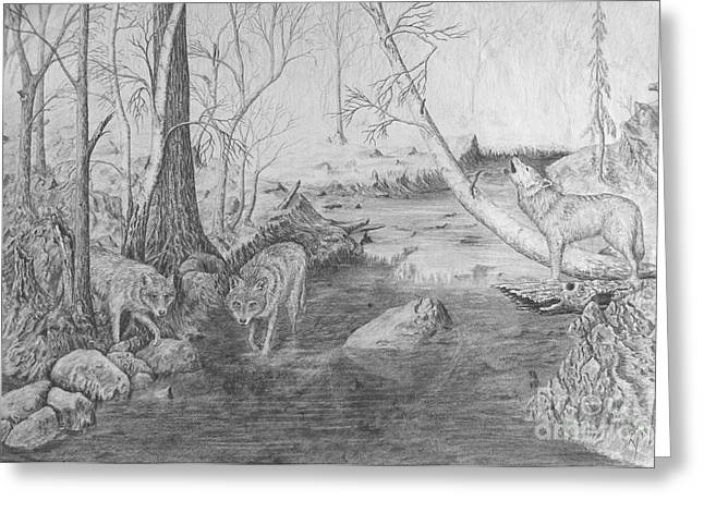 Wolf Creek Drawings Greeting Cards - Morning Hunt Greeting Card by Dan Theisen